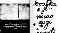 Davor Schunk – Sitna proza: radna bilježnica samohranog umjetnika