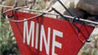 Virovitičko-podravska županija do kraja godine potpuno bez mina