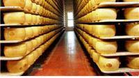 Projektana dozvola proizvodnom pogonu Centra za razvoj mliječnih proizvoda