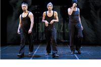 Večeras na Virkasu: Njuške, Teatra Exit