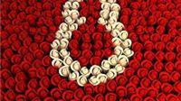 HSS čestitao Međunarodni dan žena