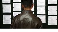 Od 668 zaposlenih osoba tijekom lipnja, 98,8% zaposleno je na određeno vrijeme