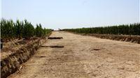 Početak radova na budućoj sjevernoj obilaznici dionici Podravske brze ceste Virovitica-Suhopolje