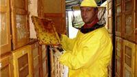 Gradu Virovitici odobreno sufinanciranje projekta za pčelare u sklopu IPA 4 programa
