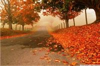 Kristijan Paljar:Kakva će nam biti jesen 2014.?