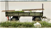 Posljedice i opće preporuke za saniranje šteta od kiše u poljoprivredi
