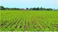 Osnivanje Hrvatske agronomske komore ugrozit će standard seljaka