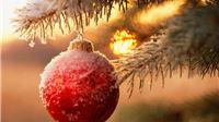Danas se slavi Božić