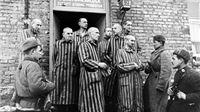 Auschwitz i ja
