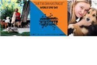U Virovitici akcija Udomljavanje je fora - Svjetski dan kastracija