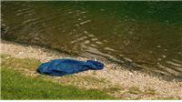 Orahovačko jezero odnijelo još jedan život