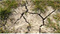 Zbog suše proglašeno stanje elementarne nepogode
