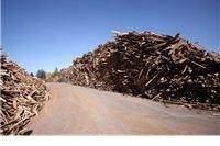 Općini Voćin izdana građevinska za izgradnju elektrane – kongregacijskog postrojenja na šumsku biomasu