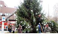 Ako želite donirati jelku za ukrašavanje grada za božićne blagdane nazovite 0800-9995