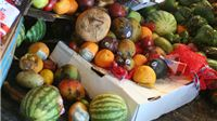 Europski parlament za donaciju neprodane hrane dobrotvornim organizacijama
