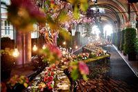 Obrtnička komora organizira posjet Europskog prvenstva cvjećara u Genovi