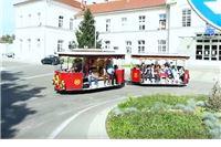 Sajamski vlakić će i ove godine prevoziti najmlađe posjetitelje na sajam Viroexpo – pogledajte raspored vožnje