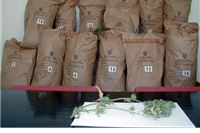 Pronađena veće količina droge, protiv 11 osoba podnesene kaznene prijave