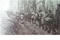 Prve antifašističke akcije u Virovitici i okolici