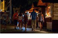Tursitička zajednca Virovitice prikupljanja ponuda za zakup drvenih turističkih kućica