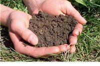 Prijave plodnosti tla u Voćinu