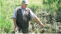 Hrvatske vode nakon poplava: Nije funkcionirala oborinska odvodnja