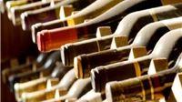 Ministar Tolušić na En Premieru najavio novi Zakon o vinima