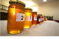 Objavljen Javni poziv za prikupljanje uzoraka meda za 12. Županijsko i 9. Međunarodno ocjenjivanje meda