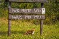 Parku prirode Papuk odobren projekt vrijedan 630 tisuća kuna