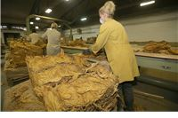 Slatinski Agroduhan  prošlu godinu završio s 53 milijuna prihoda, 15 više nego godinu prije