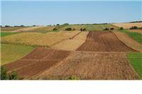 Sabor danas raspravlja o konačnom prijedlogu zakona: Ovlasti raspolaganja poljoprivrednim zemljištem u državnom vlasništvu vraćaju se općinama i gradovima