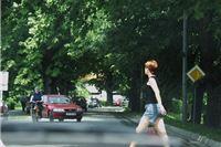 Fotogalerija: Virovitica je nekad bila zeleni grad