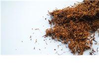 Granična policija na Terezinom Polju zaplijenila 11,8 tona duhana