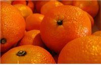 Južno voće iz slavonske ravnice