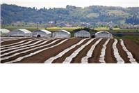"""Međuparlamentarna konferencija """"Uloga parlamenata u oblikovanju budućnosti hrane i poljoprivrede"""""""