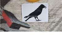 Netko je plakatima rekao što misli o pokušaju protjerivanja ptica iz parka