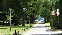 Za dobar dio Virovitice je već kasno, a najavljuje se i nova sječa: Sjene drve...