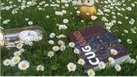 Pjesnički vrt boemske djevojčice