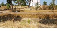 Spaljena površina: Kakvim je herbicidom tretiran prostor oko dvorca i zašto?