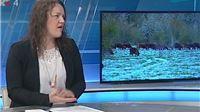 Telegram: Sud za ljudska prava pokrenuo je postupak protiv Hrvatske zbog dubio...