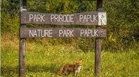 Parku prirode Papuk odobren projekt vrijednosti veće od 700 tisuća kuna