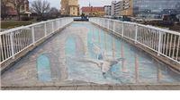 Deseta sjednici Savjeta za Slavoniju, Baranju i Srijem u Vukovaru