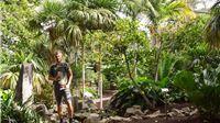Od brda smeća do najveće europske kolekcije palmi