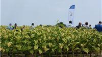 Uspostavljena kreditna linija za pomoć poljoprivrednicima