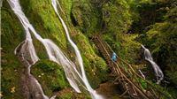 Park prirode Papuk danas obilježava 21. rođendan