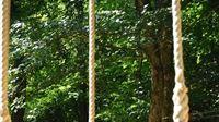 Papuk ponovo otvara Adrenalinski park i Kuću Panonskog mora