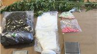 Virovitička policija nakon višemjesečne istrage uhitila dvojicu dilera