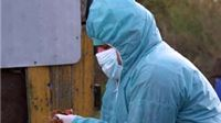 Ptičja gripa: Nacionalni krizni stožer poziva na oprez
