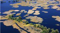 WWF slavi 60 godina postojanja: Šest desetljeća brige o prirodi u cilju stvaranja pravednijeg, zdravijeg i održivijeg svijeta