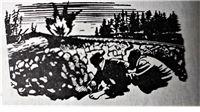 Uz Dan pobjede nad fašizmom donosimo priču o Virovitičaninu koji je ispalio prvu granatu iz prvog partizanskog topa